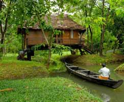 Holiday Package Thrissur